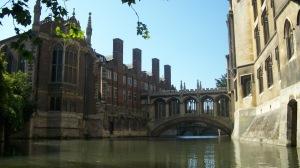 Cambridge 07 19 13 019: Elizabeth Whitten
